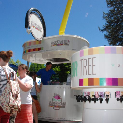 Shaved Ice Kiosk, Concession Stand